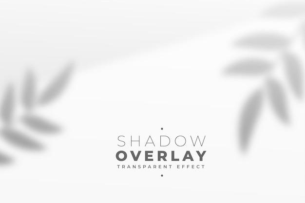 Fondo de efecto de sombra de superposición de hojas transparentes