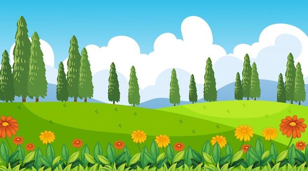 Fondo de escena de naturaleza con flores en las colinas