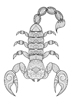 Fondo de escorpión dibujado a mano