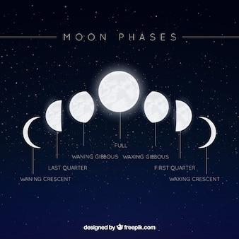 Fondo estrellado con fases de la luna