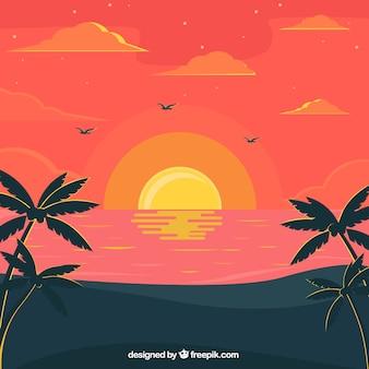 Fondo fantástico de playa al atardecer