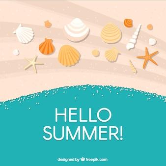 Fondo de feliz verano con conchas en la arena