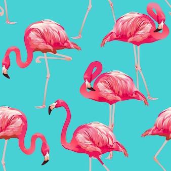Fondo de flamenco tropical de pájaro - patrón transparente