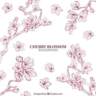 Fondo de flor de cerezo en estilo hecho a mano