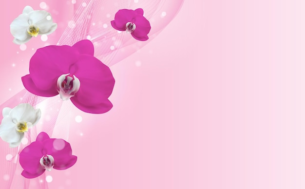 Fondo de flor de orquídea belleza natural realista 3d.