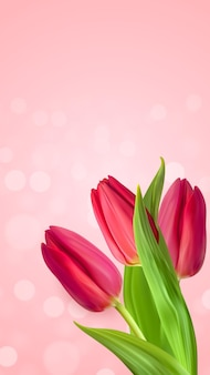 Fondo de flor de tulipanes rosa natural realista.
