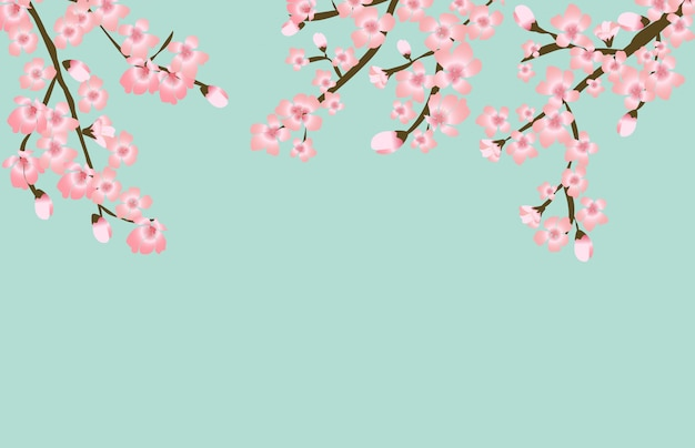 Fondo floral japonés de la flor floral abstracta de sakura
