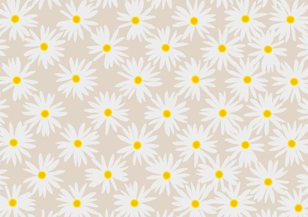 Fondo floral margarita