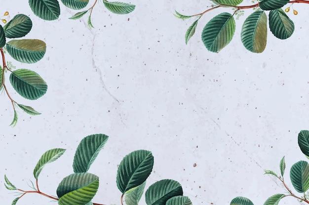 Fondo floral del vector del marco de la hoja verde