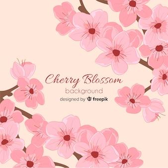 Fondo de flores de cerezo dibujadas a mano