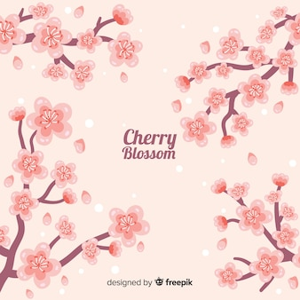 Fondo de flores de cerezo