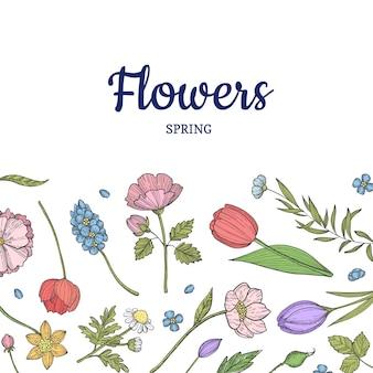 Fondo de flores dibujadas a mano