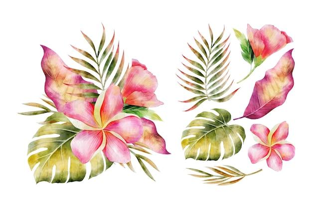 Fondo de flores hermosas acuarela