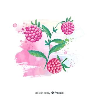 Fondo de fruta en acuarela con frambuesas