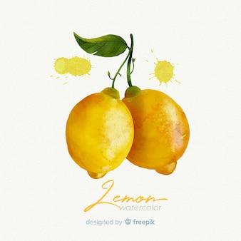 Fondo de frutas en acuarela con limones