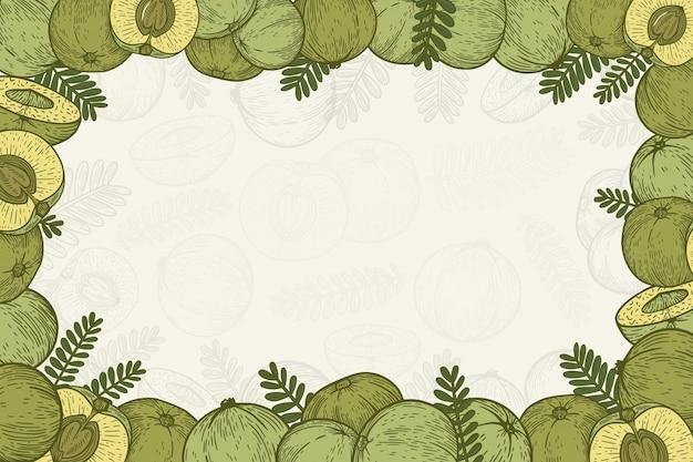 Fondo de frutas de amla dibujado a mano realista