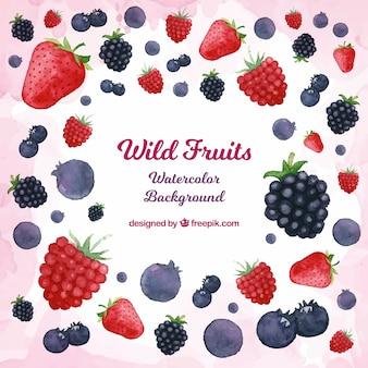 Fondo de frutas del bosque en acuarela
