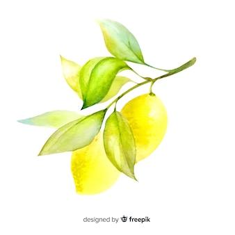 Fondo de frutas con limón en acuarela