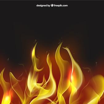 Fondo del fuego