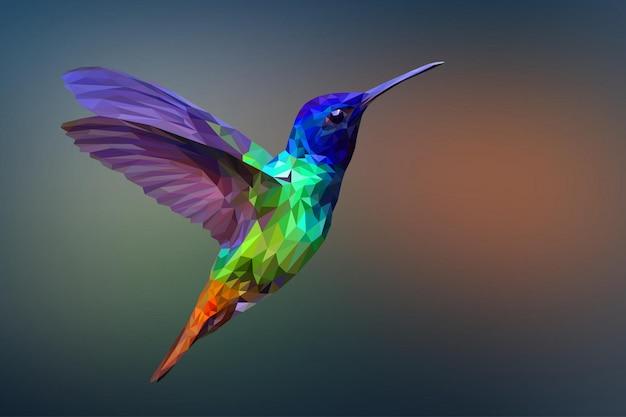Fondo geométrico poligonal del animal del colibrí