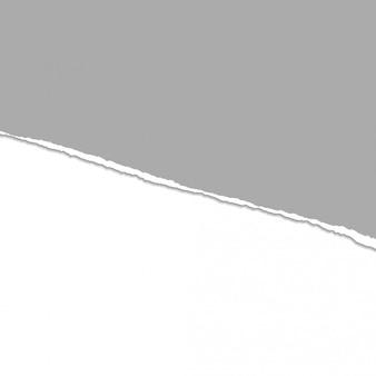 Fondo gris divisor de papel rasgado o rasgado de vector