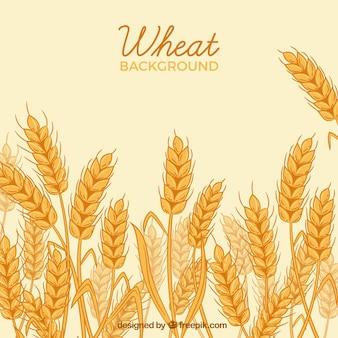 Fondo hecho a mano de trigo