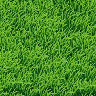 Fondo de hierba verde.