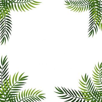 Fondo de hoja de palma. marco de verano con palmeras. banner de oferta
