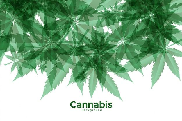 Fondo de hojas de cannabis o marihuana verde