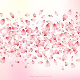 Fondo de hojas de flor de cerezo