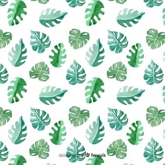 Fondo hojas de monstera acuarela