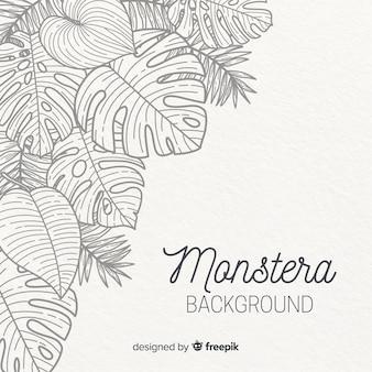 Fondo de hojas de monstera dibujado a mano