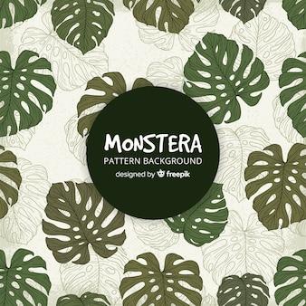 Fondo hojas de monstera