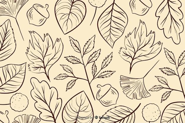 Fondo de hojas otoñales dibujadas