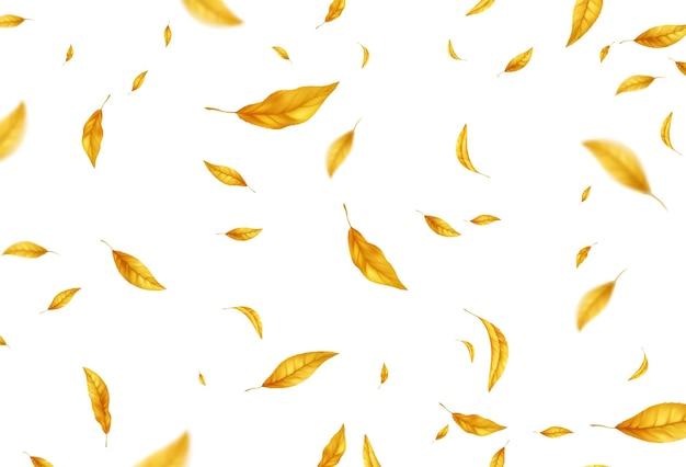 Fondo de hojas de otoño volando cayendo. hoja de otoño amarillo realista aislada sobre fondo blanco. fondo de venta de otoño. ilustración vectorial