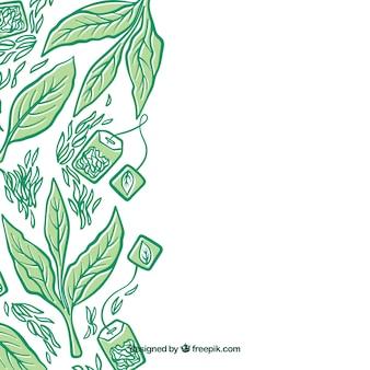 Fondo con hojas de té dibujadas a mano