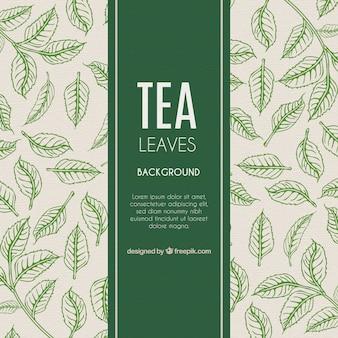 Fondo de hojas de té en estilo hecho a mano