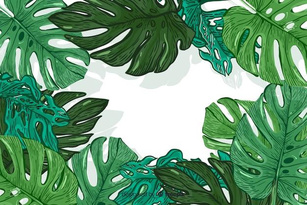 Fondo de hojas tropicales dibujadas a mano