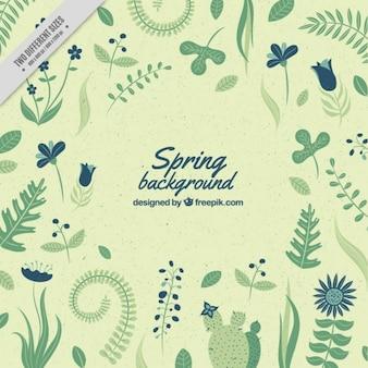 Fondo de hojas verdes primaverales