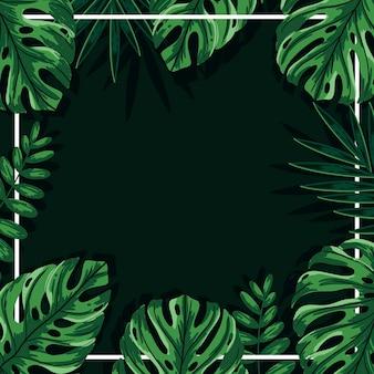Fondo de hojas verdes tropicales con marco