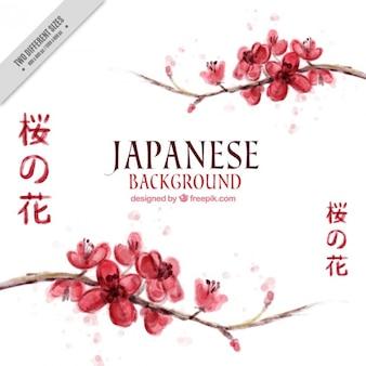 Fondo japonés de bonitas flores de cerezo de acuarela