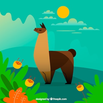 Fondo de linda alpaca en la naturaleza