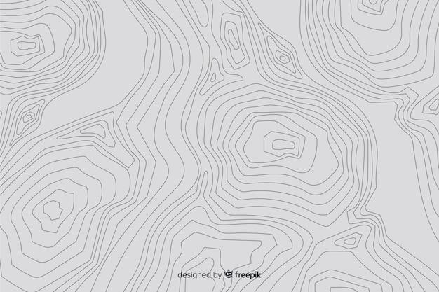 Fondo de líneas topográficas blancas