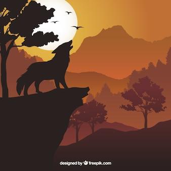 Fondo de lobo aullando al anochecer