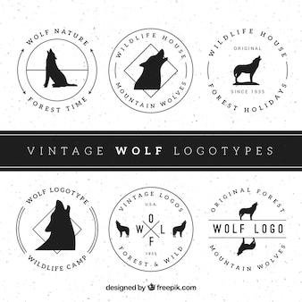 Fondo de logos vintage de lobos