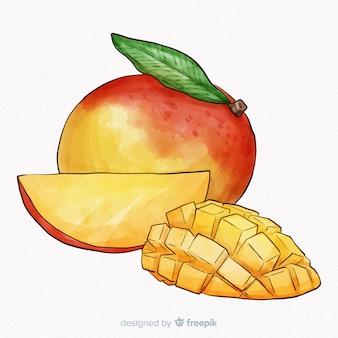 Fondo mango dibujado a mano