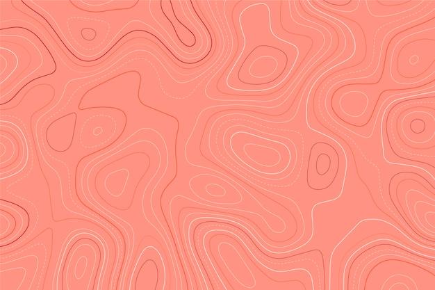 Fondo con mapa topográfico