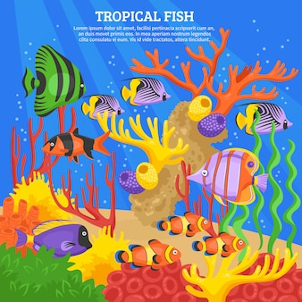 Fondo de mar de peces tropicales