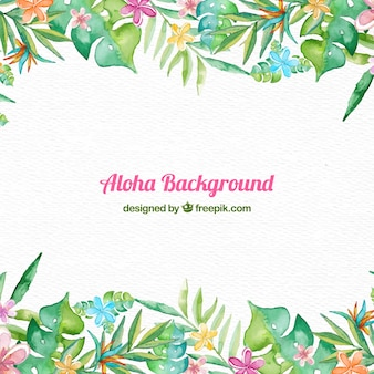 Fondo con marco aloha