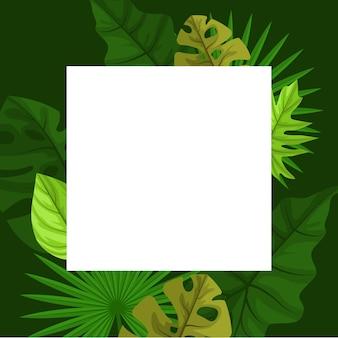 Fondo de marco de borde de hoja de verano de planta tropical verde cuadrado